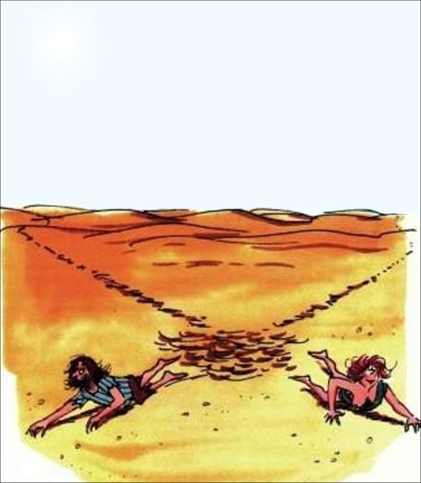 В пустелі
