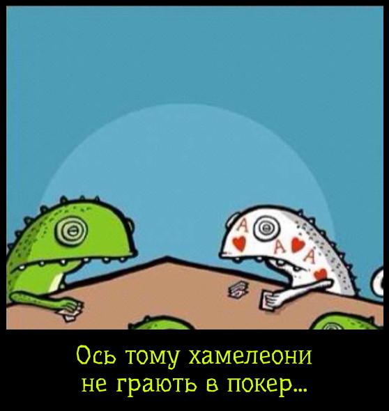 Смішний малюнок про хамелеонів. Якщо хамелеон візьме карту, то забарвиться як та карта. Ось тому хамелеони не грають у покер