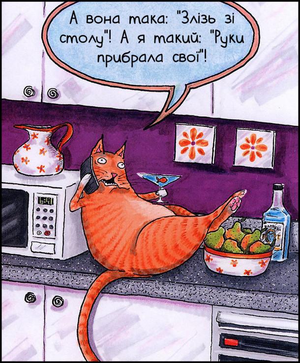 """Смішний малюнок про кота. Гладкий котяра розвалився на кухонному столі і балакає по телефону: - А вона така: """"Злізь зі столу""""! А я такий: """"Руки прибрала свої""""!"""
