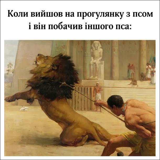 Коли вийшов на прогулянку з псом і він побачив іншого пса. Ілюстрація: приборкання лева в Стародавньому Єгипті