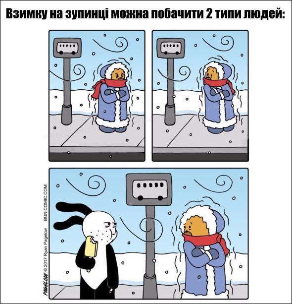 Зимова класифікація. Взимку на зупинці можна побачити 2 типи людей