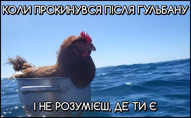 Коли прокинувся після гульбану і не розумієш, де ти є. На фото: курка в каструлі пливе морем