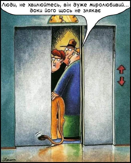 Смішний малюнок: Лев в ліфті. В ліфт заходить чоловік з левом. Каже: - Люди, не хвилюйтесь, він дуже миролюбивий... доки його щось не злякає. В лева хвіст назовні і дверцятка ліфта закриваються...