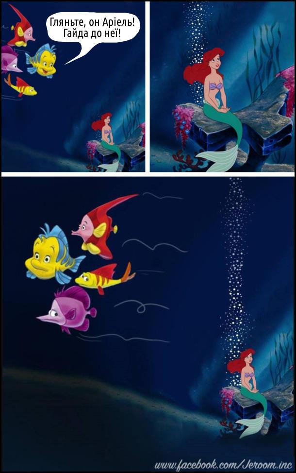 Прикол про Русалоньку. Русалонька сидить сама. Її побачили риби: - Гляньте, он Аріель! Гайда до неї! Тут побачили, що вона пускає гази і всі швидко відпливли від неї