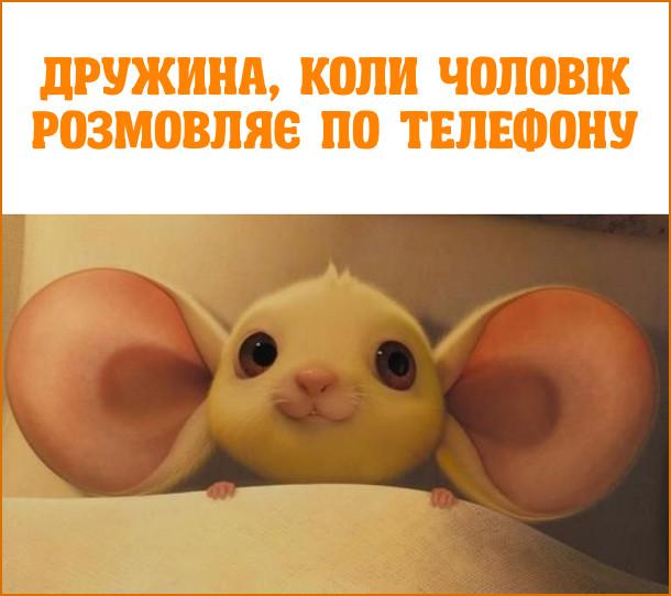 Дружина,  коли  чоловік розмовляє  по  телефону. На картинці: миша з величезними вухами-локаторами