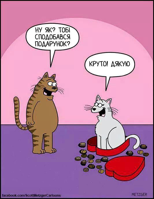 Кіт подарував кицькі коробку цукерок. Вона викинула цукерки і всілась в коробку. - Ну як? тобі сподобався подарунок? - Круто! Дякую