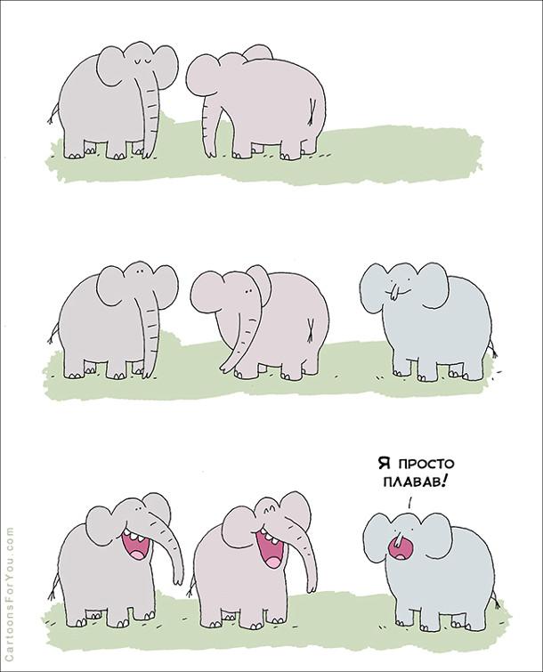 Два слони розмовляють. До них підходить третій,ь з маленьким хоботом. Слони починають з нього сміятися. Він виправдовується: - Я просто плавав