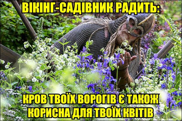 Вікінг-садівник радить: кров твоїх ворогів є також корисна для твоїх квітів
