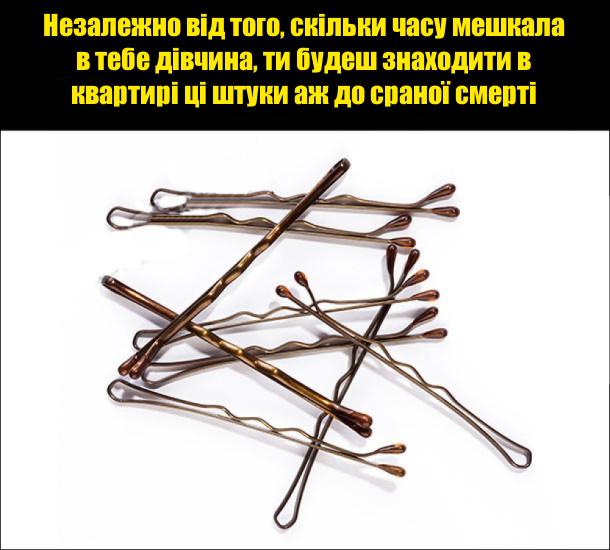 Незалежно від того, скільки часу мешкала в тебе дівчина, ти будеш знаходити в квартирі ці штуки (шпильки для волосся) аж до сраної смерті
