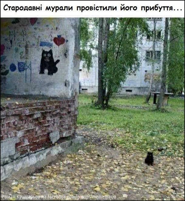 Жарт про чорне кошеня. Стародавні мурали провістили його прибуття. На фото: графіті з зображенням чорного котяри і біля нього сидить схоже маленьке чорне кошеня