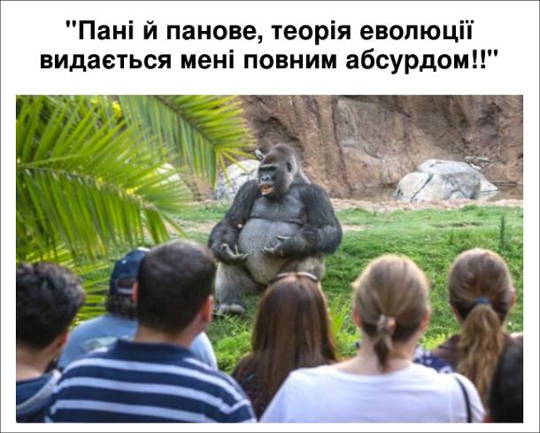 Смішне фото горили в зоопарку. Здається неначе вона веде лекцію перед глядачами: - Пані й панове, теорія еволюції видається мені повним абсурдом!!