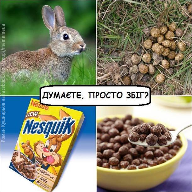 Послід кролів - кульки. Продукт Nesquik з кроликом - також кульки. Думаєте, просто збіг?