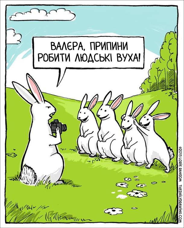 Прикол Зайці фотографуються. Заєць фотограф: - Валєра, припини робити людські вуха!