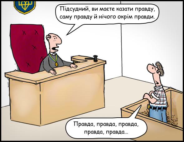 Судове засідання. Суддя: — Підсудний, ви маєте казати правду, саму правду й нічого окрім правди. Підсудний: — Правда, правда, правда, правда, правда…