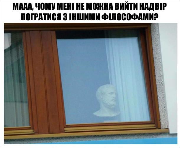 У вікні бюст філософа. Мааа, чому мені не можна вийти надвір погратися з іншими філософами