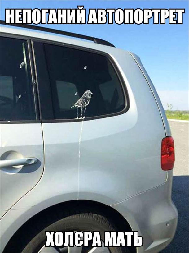 Пташиний послід на автомобілі в формі пташки. Непоганий автопортрет, холєра мать