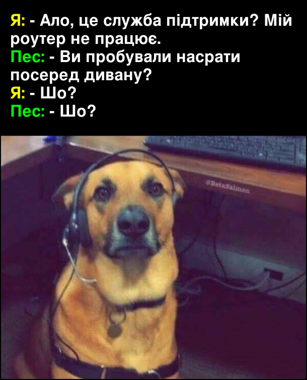 Я: - Ало, це служба підтримки? Мій роутер не працює. Пес: - ви пробували насрати посеред дивану? Я: - Шо? Пес: - Шо?