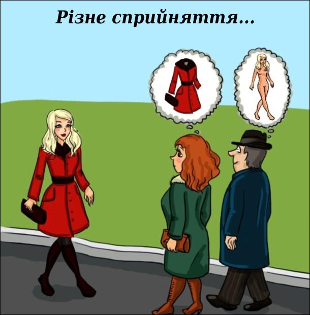Йде подружня пара, коли назустріч гарна дівчина. Чоловік уявляє її без одягу, а дружина - одяг без неї