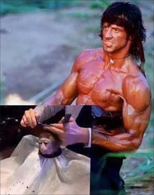 Мем Monkey Haircut (підстригання мавпи). Рембо