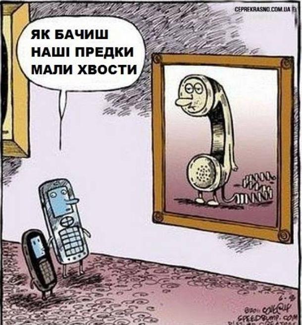 Два мобільні телефони: батько і син підійшли до картини, де зображено провідний телефон. Батько: - Як бачиш, наші предки мали хвости