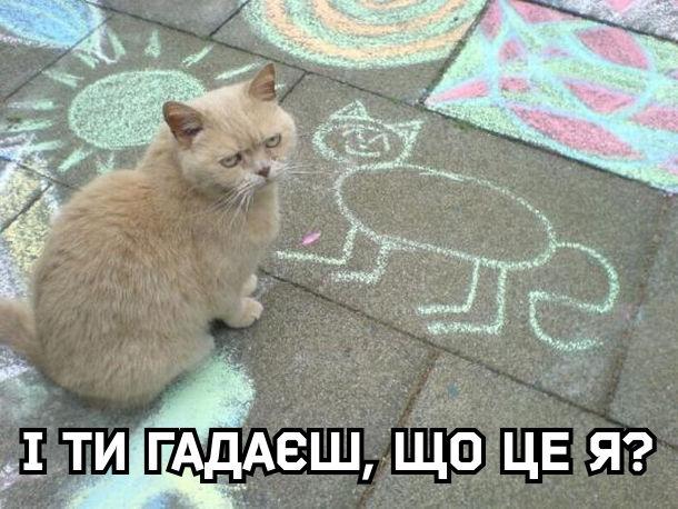 Кіт подивився як малюк намалював його крейдою на бруківці. І ти гадаєш, що це я?