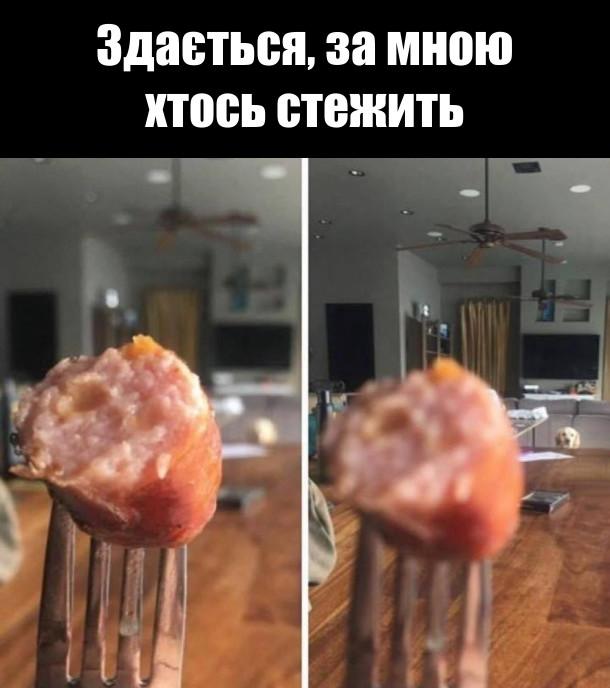 Перше фото сфокусоване на шматку ковбаси на виделці. Здається за мною хтось стежить. Змінив фокусування і побачив як на мене дивиться собака в іншому кінці стола