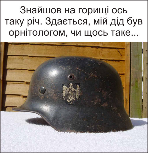 Знайшов на горищі ось таку річ (німецький шолом з орлом часів другої світової війни). Здається, мій дід був орнітологом, чи щось таке...
