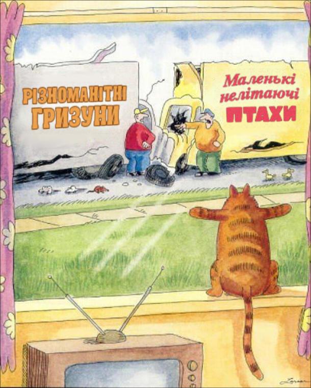 """На вулиці втаранились дві вантажівки одна з надписом """"Різноманітні гризуни"""", інша - """" Маленькі нелітаючі птахи"""". Поки водії лаються між собою, гризуни і птахи повибігали. Все це з розпачем спостерігає кіт крізь вікно будинку."""