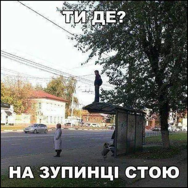 - Ти де? - На зупинці стою. Хлопець стоїть на даху автобусної зупинки