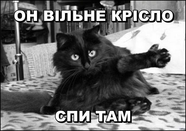 Кіт сидить на ліжку і лапою показує вбік: - Он вільне крісло, спи там