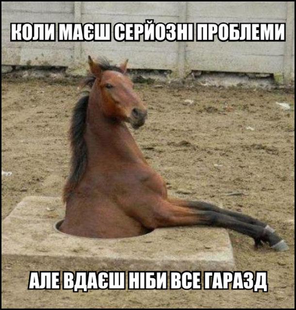 Кінь в каналізаційному люці. Коли маєш серйозні проблеми, але вдаєш ніби все гаразд