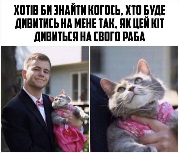 Смішна фотка Кіт і господар. Хотів би знайти когось, хто буде дивитись на мене так, як цей кіт дивиться на свого раба. На фото: Кіт лагідно дивиться на свого господаря