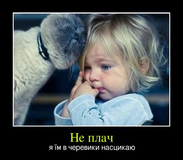 Маленька дівчинка плаче, до неї підійшов кіт і лащиться. Каже: - Не плач, я їм в черевики насцикаю