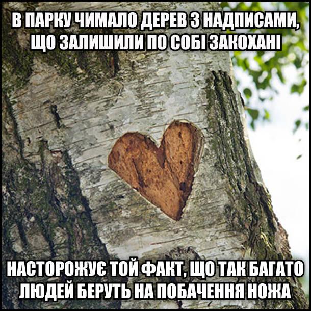 В парку чимало дерев з надписами, що залишили по собі закохані. Насторожує той факт, що так багато людей беруть на побачення ножа