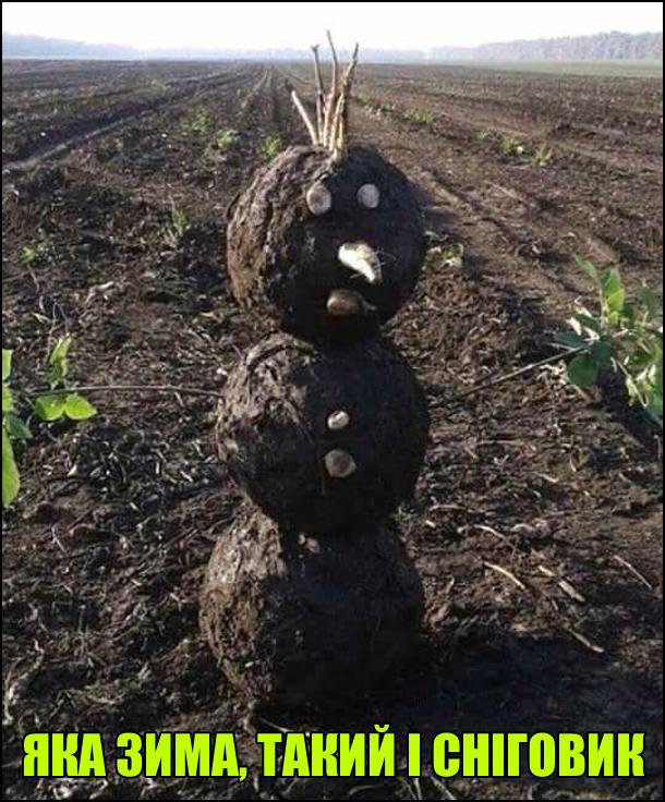 Яка земля, такий і сніговик. Сніговик зроблений із болота, землі