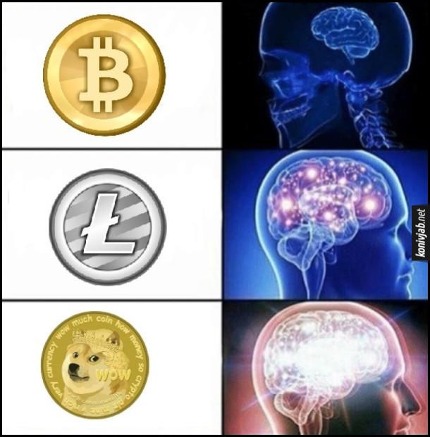 Рейтинг  криптовалют.  Мем expanding brain (розширення мозку). Bitcoin, Litecoin і валюта з песиком