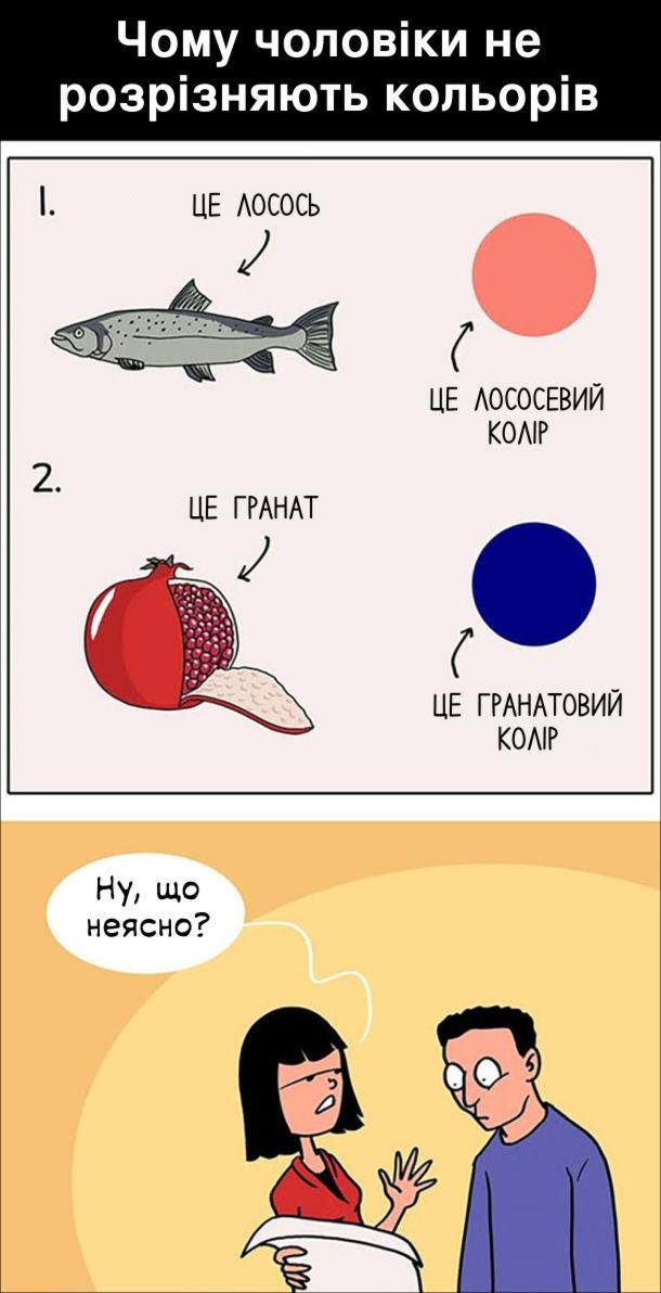 Чому чоловіки не розрізняють кольорів. Це лосось, це лососевий колір. Це гранат, це гранатовий колір. - Ну, що неясно?