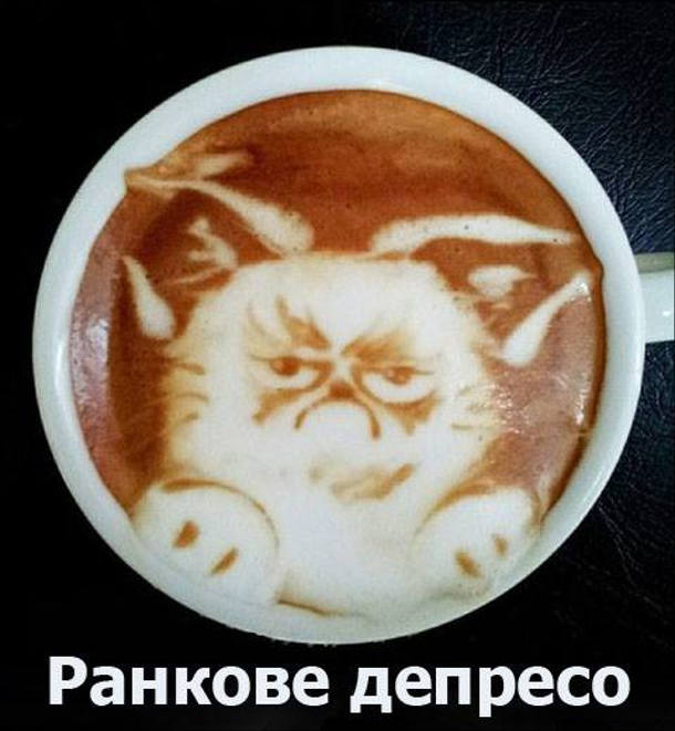 Жарт про каву і котів. Ранкове депресо. Малюнок на кавовій пінці - сердитий кіт