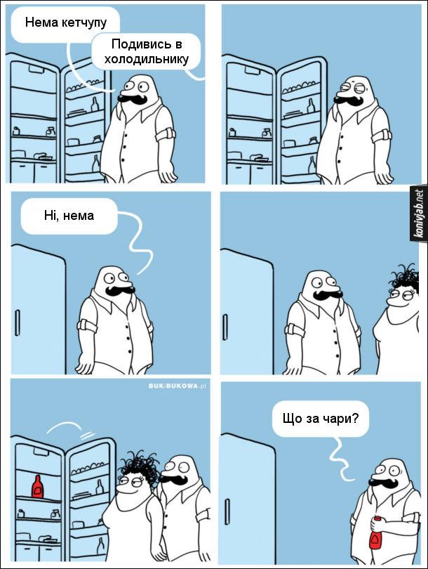 Комікс про холодильник, пана Бука і пані Букову. Чоловік відчиняє холодильника і гукає дружині: - Нема кетчупу. Дружина з іншої кімнати відповідає: - Подивись в холодильнику. Чоловік уважно придивився і каже: - Ні, нема. Прийшла дружина, відчинила, а там стоїть кетчуп. Чоловік зивовано: - Що за чари? Гумор про те, що чоловік часто не може знайти якісь речі в хаті, а дружина без проблем знаходить