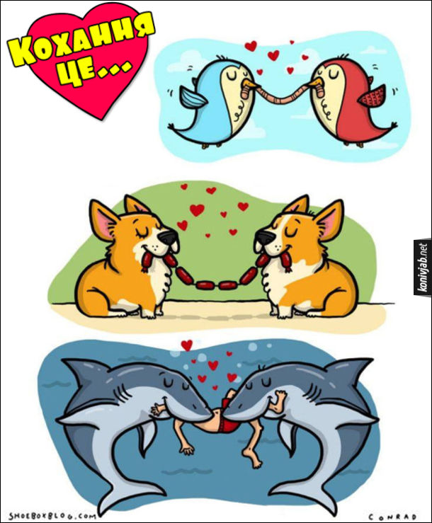 Жарт, прикол. Кохання це... Двоє закоханих пташок їдять одного черв'яка, двоє закоханих собак їдять одну в'язку сосисок, дві закохані акули їдять одну людину