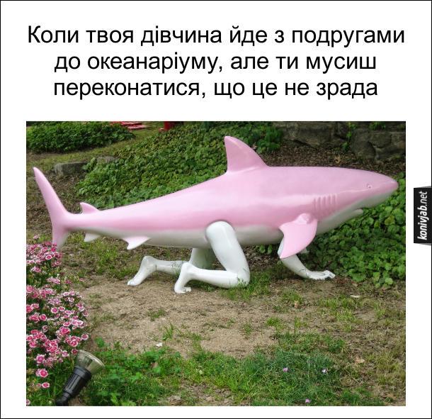 Коли твоя дівчина йде з подругами до океанаріуму, але ти мусиш переконатися, що це не зрада. Вдягнувся в костюм акули