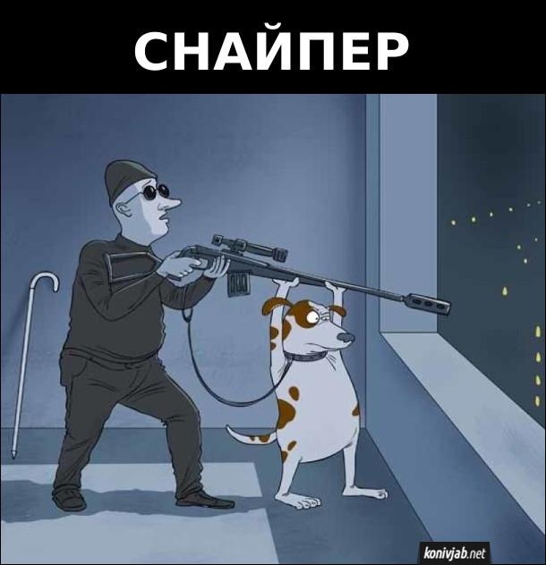 Сліпий снайпер стоїть біля вікна і тримає рушницю, а пес-поводир цілиться