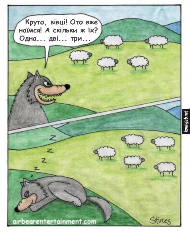 Смішний комікс про вовка і овець. Вовк підкрався до отари і каже до себе: - Круто, вівці! Ото вже наїмся! А скільки ж їх? Одна... дві... три...
