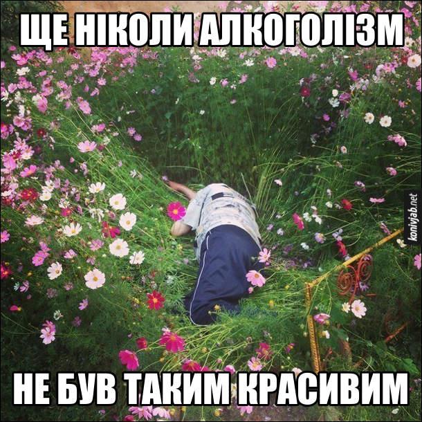 П'яниця заснув у квітах. Ще ніколи алкоголізм не був таким красивим