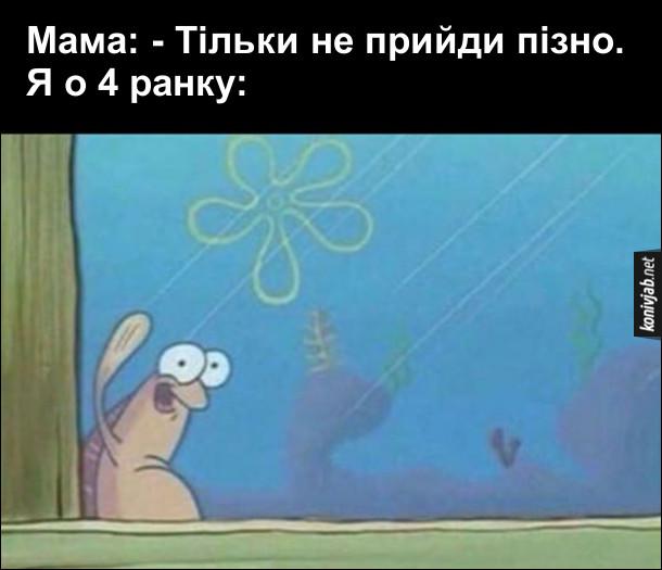 Коли приходиш пізно додому. Мама: - Тільки не прийди пізно. Я о 4 ранку: рибка з мультфільму про Губку Боба стоїть за вікном і махає рукою