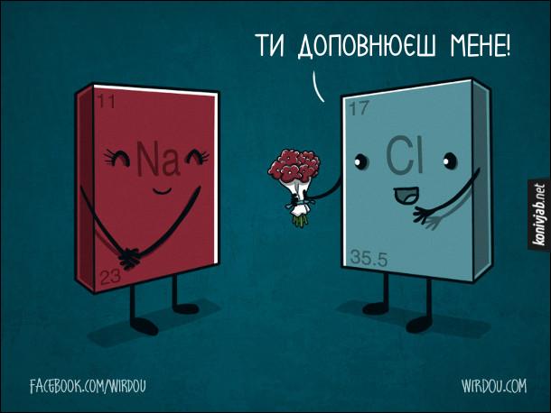 Смішний малюнок про хімію. Смішна хімія. Хлор підійшов до натрію з букетів квітів і каже: - Ти доповнюєш мене! Натрій зашарілася