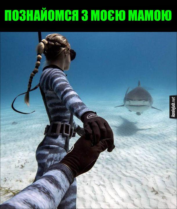 Знайомство з тещею. Дівчина-аквалангістка під водою веде за руку хлопця-аквалангіста до акули: - Познайомся з моєю мамою