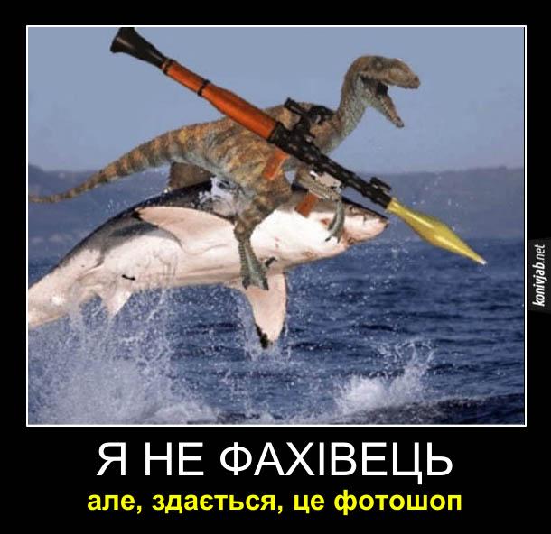 Смішний фотоприкол. Акула вистрибнула з води. На спині в неї раптор з гранатометом. Я не фахівець, але, здається, це фотошоп