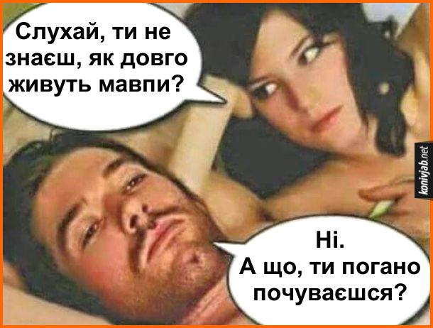 Смішний сімейний діалог. Чоловік з дружиною лежать в ліжку. Дружина: - Слухай, ти не  знаєш, як довго живуть мавпи? Чоловік: - Ні. А що, ти погано почуваєшся?