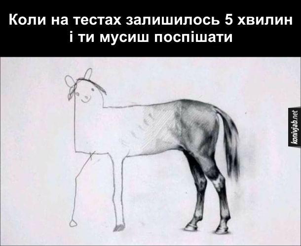 Мем про ЗНО. Коли на тестах халишилось 5 хвилин і ти мусиш поспішати. Малюнок коня - половина коня намальована гарно, а інша - нашвидкоруч